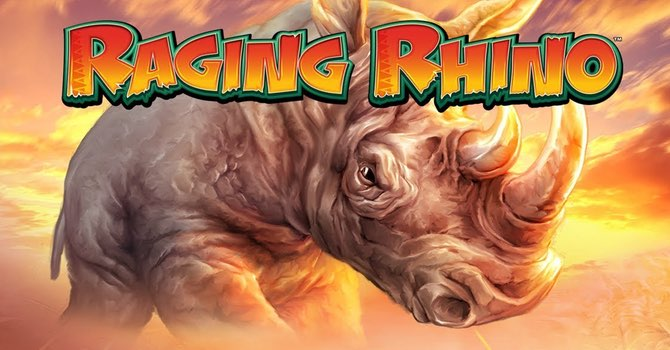 raging-rhino slot